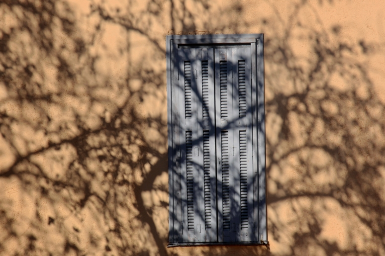 A closed window with tree shadows
